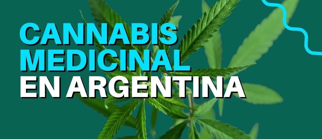 Ley de cannabis medicinal: nueva reglamentación que avanza hacia el reconocimiento de la realidad